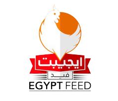 egypt-feed
